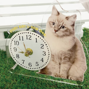 スタンドアクリル時計 設置例①